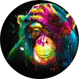 Rainbowchimp