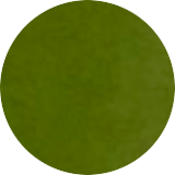 Jenzalls