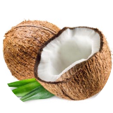 Coconut nut