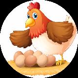 EggyBattenburg